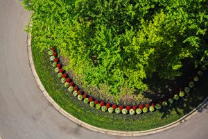 Landscaping Continuum Services